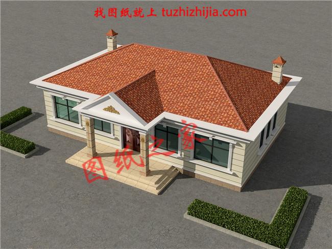 农村盖平房设计大全图,乡下建房一层户型图及效果图图片